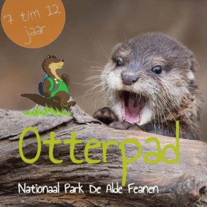 Zonnestralen-Vangen-Met-Pasen-Otterpad-Eernewoude